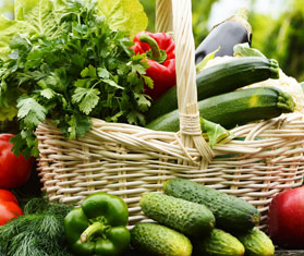 harvest basket - Garden Harvest Supply