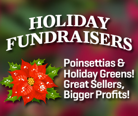 Holiday Fundraiser
