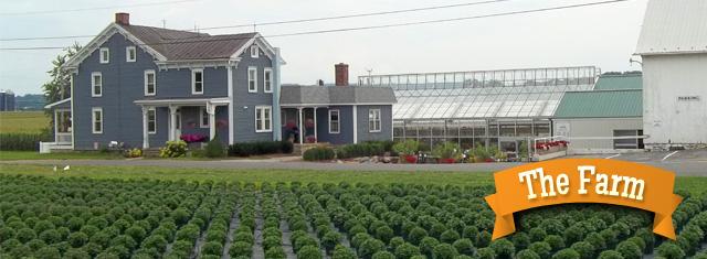 Fresh Produce Flowers Garden Center Lancaster Pa